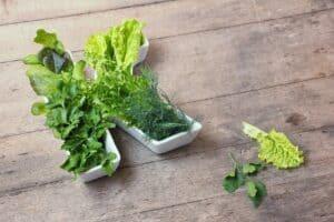 Vitamine K tekort voorkomen met voeding