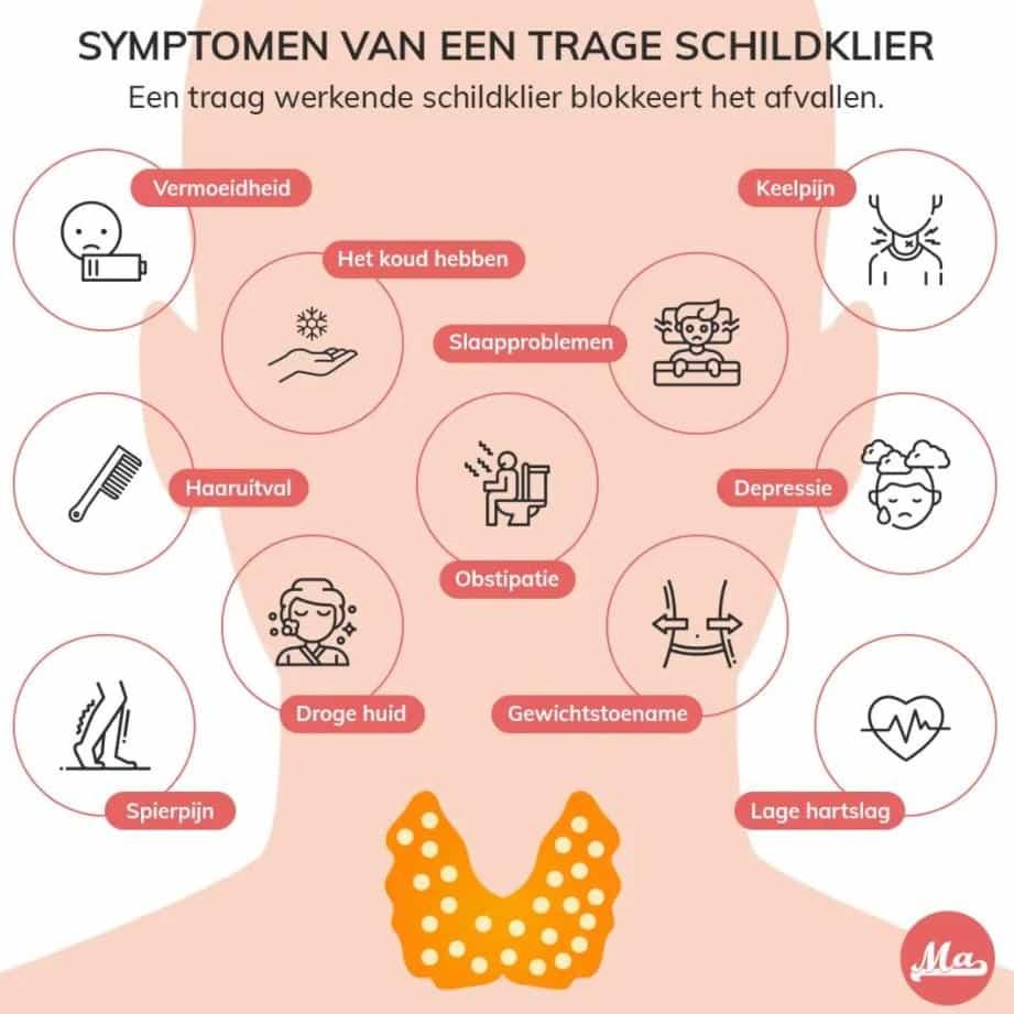 Symptomen traag werkende schildklier