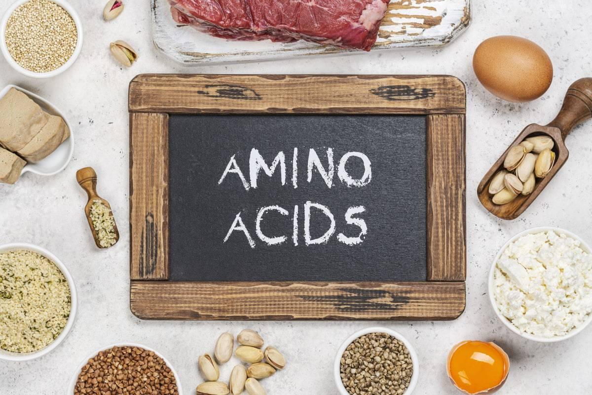 Welke aminozuren zijn er?