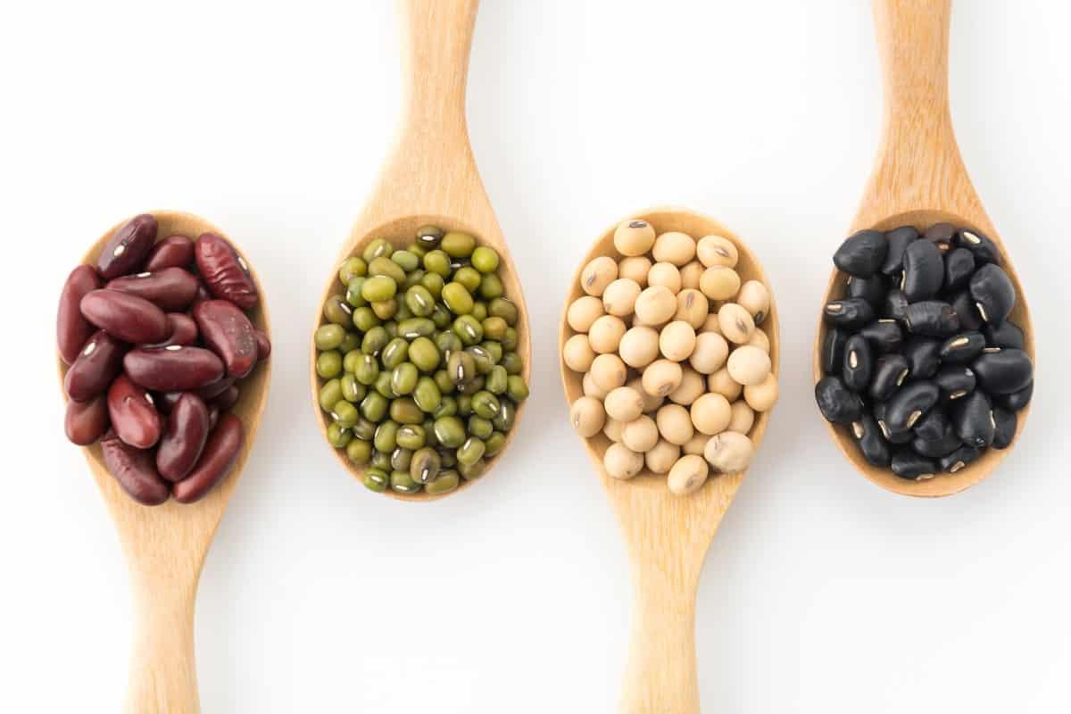 Plantaardige eiwitten peulvruchten