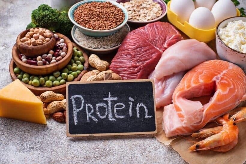 Dierlijke en plantaardige eiwitten
