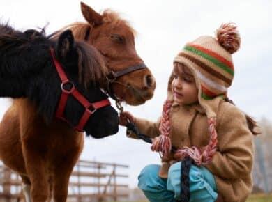 therapie met dieren