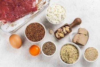 voeding met veel essentiële aminozuren